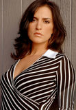 Stylish brunette woman Stock Photos