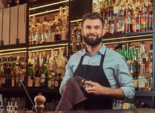 Free Stylish Brutal Barman Is Cleaning The Glass With A Cloth At Bar Counter Background. Stock Image - 117819191