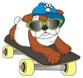 Stylish bulldog lying on sjateboard royalty free illustration