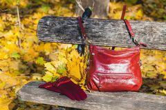 Stylish burgundy shoulder bag and gloves of same color on the be. Fashionable fall composition. Stylish burgundy shoulder bag and gloves of same color on the stock photo