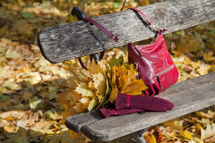 Stylish burgundy shoulder bag and gloves of same color on the be Royalty Free Stock Photos