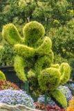 Stylish bush sculpture design lovers couple shanghai china Stock Photos