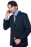 Stylish businessman talking on his mobile phone Stock Photos