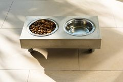 Stylish cat food bowl Stock Images