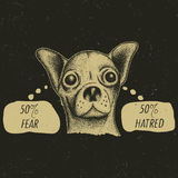 Stylish Chihuahua Poster Royalty Free Stock Photography