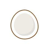 Stylish Coconut Isolated On White Background Stock Photos