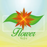 Stylish Colorful Floral Icon On Background Royalty Free Stock Image