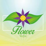 Stylish Colorful Floral Icon On Background Stock Photos