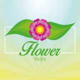 Stylish Colorful Floral Icon On Background Royalty Free Stock Images
