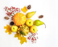 Stylish composition of vegetables, fruits, autumn leaves, berries. Top view on white background. Autumn flat lay Stock Photography