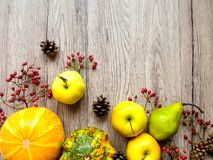 Stylish composition of pumpkins, autumn fruits and berries. Top Royalty Free Stock Images