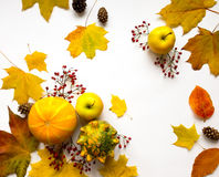 Stylish composition of vegetables, fruits, autumn leaves, berries. Top view on white background. Autumn flat lay Royalty Free Stock Photo
