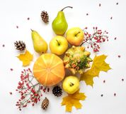 Stylish composition of vegetables, fruits, autumn leaves, berries. Top view on white background. Autumn flat lay Royalty Free Stock Image