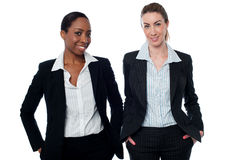 Stylish corporate women posing casually Royalty Free Stock Images