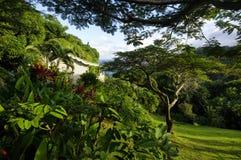 The stylish cottage on west coast of Dominica island on January 4, 2017. Castle Bruce i. CASTLE BRUCE, DOMINICA - JANUARY 4, 2017 - The stylish cottage on west royalty free stock images