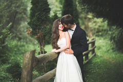 Stylish couple of happy newlyweds posing in the park on their wedding day Royalty Free Stock Photo