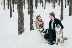 Stylish couple are playing with siberian husky in snowy forest. Winter wedding Artwork royalty free stock photos