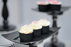 Stylish cupcakes Royalty Free Stock Image