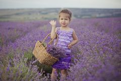 Stylish cute blond lady girl with plump lips fancy dressed in violet purple evening cloths dress posing standing on lavender field royalty free stock photos