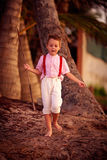 Stylish cute boy exploring tropical palm grove Royalty Free Stock Images
