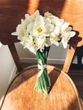 Stylish daffodils on rustic wooden chair in sunny light. Fresh yellow flowers bouquet on chair, countryside still life. Hello. Spring. Happy Mothers day stock photo