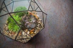 Stylish decor vases for interior Stock Images