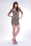 A stylish elegant girl Royalty Free Stock Photo