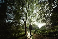 Stylish elegant groom walking to amazing bohemian bride in light in the sunny woods. Light stock photography