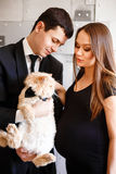 Stylish elegant young couple waiting a baby. Brunette female in black cocktail dress and men in tuxedo holding red fluffy cat Stock Photo