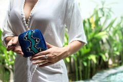 Stylish female hands holding luxury snakeskin python wallet. Fashionable women accessory. Stylish accessories, blue stock photography