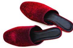 Stylish female red shoes over white. Background Royalty Free Stock Image