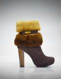 Stylish female shammy shoe Stock Image