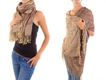 Stylish Feminine Scarf with Oriental Pattern Stock Images