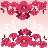Stylish floral background Stock Image