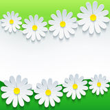 Stylish floral background, 3d flower chamomile. S. Abstract trendy spring or summer background with sheet of paper - place for text. Floral frame. Vector Stock Image