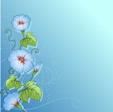 Stylish floral background. Design of vector Stock Photography