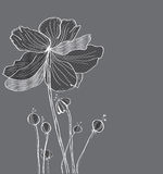 Stylish floral background, hand drawn flowers Stock Photography