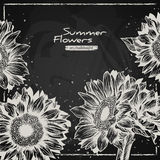 Stylish floral background, hand drawn retro Stock Images