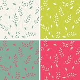 Stylish floral background, set Stock Photos