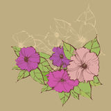 Stylish floral backgrounds with petunias Royalty Free Stock Images