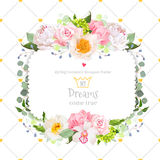 Stylish floral square vector design frame Royalty Free Stock Photography