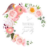 Stylish floral vector round frame with ranunculus, peony, rose, green plants and small robin bird on white. Peachy, white and yellow flowers. Crescent shape Royalty Free Stock Photo