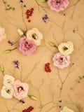 Stylish flowers pattern. Royalty Free Stock Image