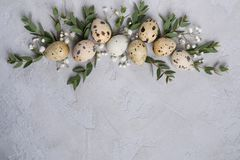 Stylish Frame background with quail easter  eggs and leaf sprigs of eucalyptus. On  concrete background with place for text. Royalty Free Stock Image