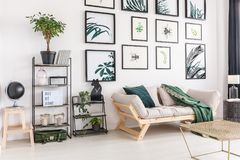 Stylish gallery themed day room. Interior embellished with art posters presenting beetles and plants Stock Image