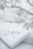 Stylish gift box Royalty Free Stock Photography