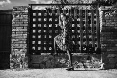 Black and white art monochrome photography. Stylish girl in a dress and pantyhose in a grid posing outside. Fashion Photo. Black and white art monochrome Royalty Free Stock Photo