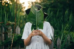 Stylish girl in linen dress holding big green leaf at face at wooden fence and grass. Portrait of boho woman in hat posing with. Leaf in summer countryside in royalty free stock image