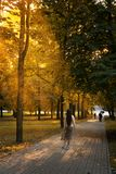 Stylish girl walks in the autumn park. People are walking in the distance. The sun`s rays make their way through the. Leaves Stock Photography