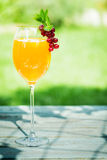 Stylish glass of orange and champagne cocktail Royalty Free Stock Photos